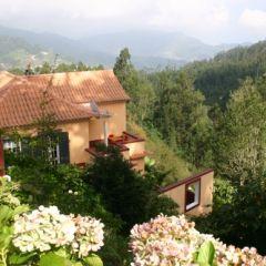 Casa Catarina (Madeira)