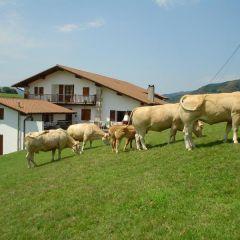 Alkeberea (Navarra)